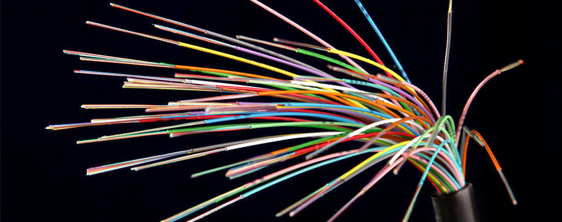 Bouquet de fibre optique. / © G. Wait